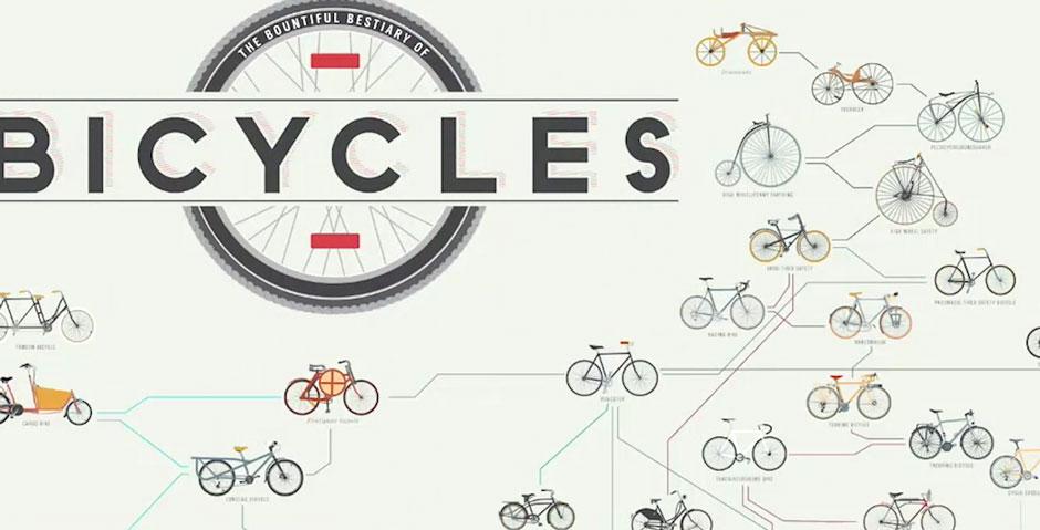 Infographics Tutorials | Lynda.com